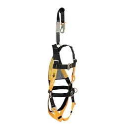B-Safe Black and Gold Harness Complete with side D